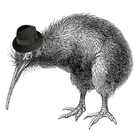 avatar for DonKiwi