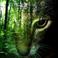 avatar for Arya8888