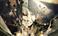 avatar for Davimln