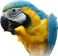 avatar for ewpolly1