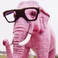 avatar for kadenhasty