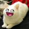avatar for DESTROYERER