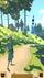 avatar for rizkyilham371