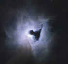 avatar for NGC1999